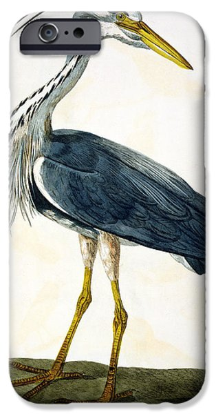 The Heron  IPhone 6s Case by Peter Paillou