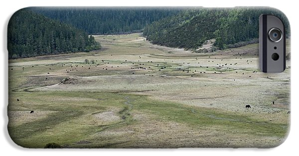 A Herd Of Yaks In Potatso National Park IPhone 6s Case by Tony Camacho