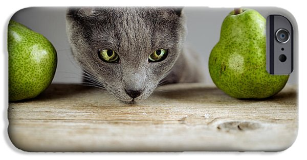 Cat And Pears IPhone 6s Case by Nailia Schwarz