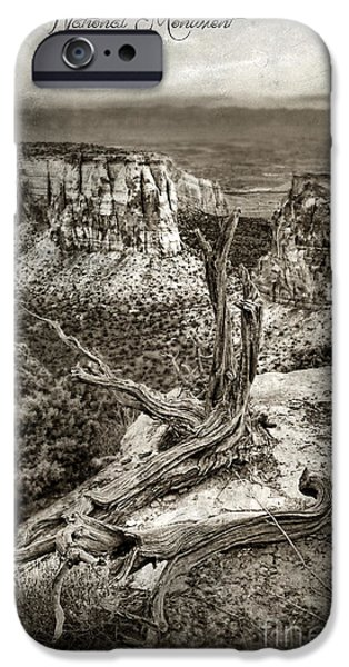 Dead Tree On Cliff Overlooking View Of Buttes IPhone Case by Jill Battaglia