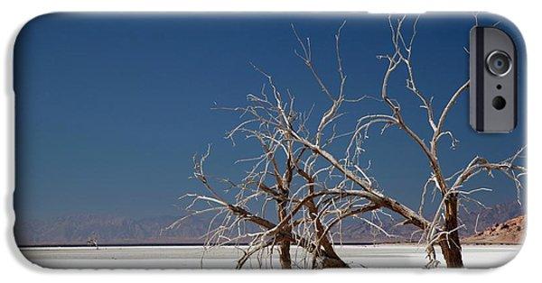 Dead Trees On Salt Flat IPhone 6s Case by Jim West