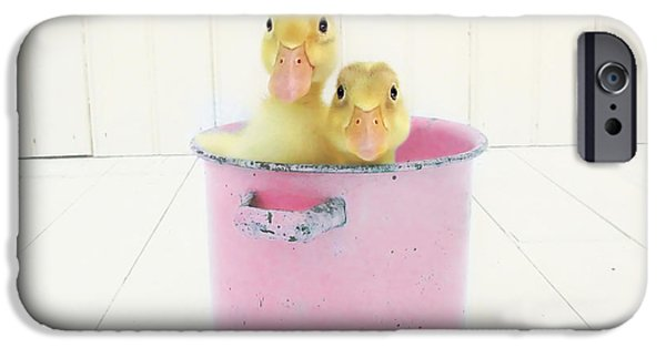 Duck Soup  IPhone Case by Amy Tyler