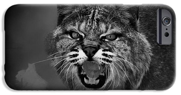 Lynx - Up Close And Personal IPhone Case by Mountain Dreams