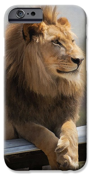 Majestic Lion IPhone Case by Sharon Foster