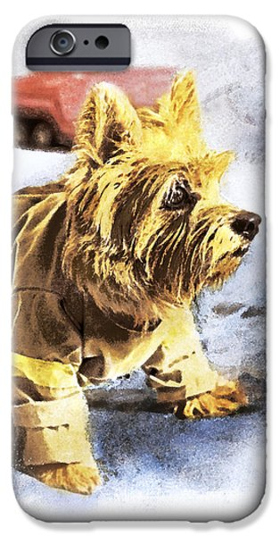 Norwich Terrier Fire Dog IPhone Case by Susan Stone
