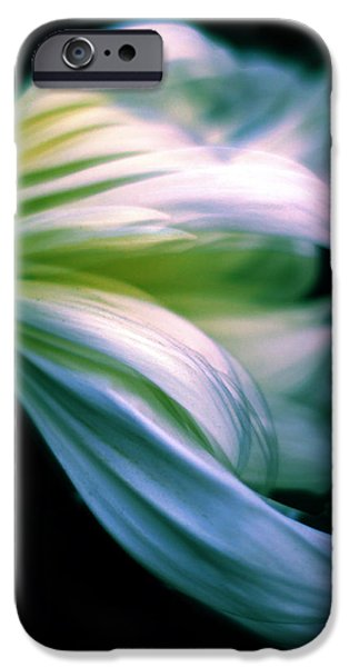 Pastel Petals IPhone Case by Jessica Jenney