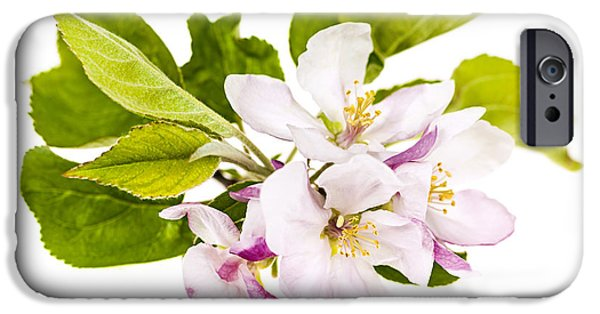 Pink Apple Blossoms IPhone Case by Elena Elisseeva