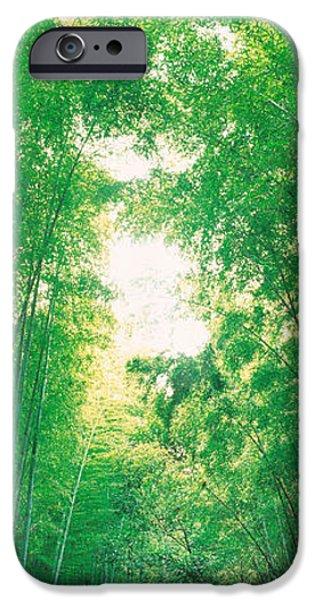 Sagano Kyoto Japan IPhone Case by Panoramic Images