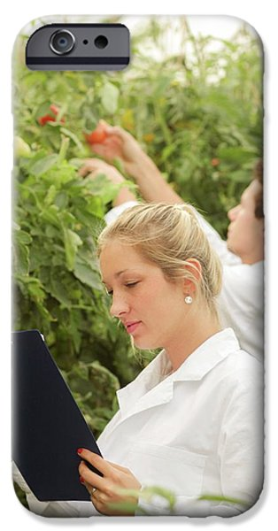 Scientists Examining Tomatoes IPhone 6s Case by Gombert, Sigrid