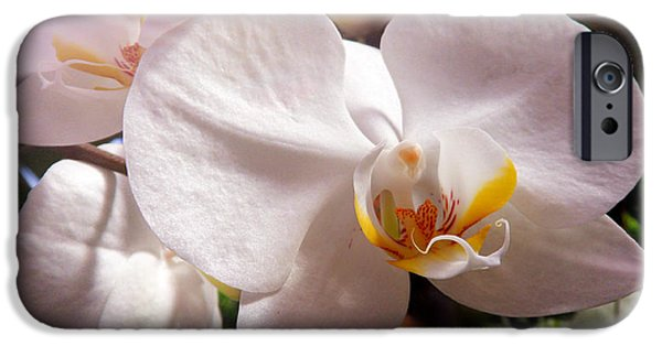 Purity And Hope IPhone Case by Xueyin Chen