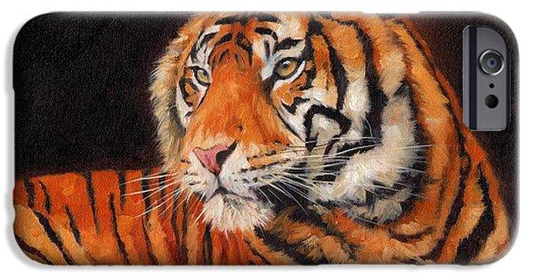 Sumatran Tiger  IPhone 6s Case by David Stribbling