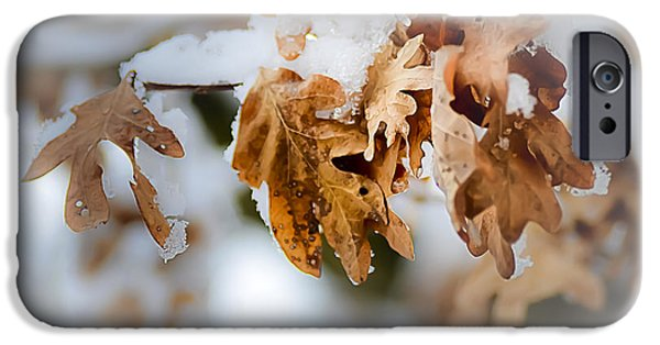 Winter Leaves IPhone Case by Julie Palencia
