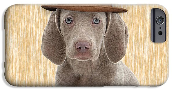 Weimaraner Collection IPhone 6s Case by Marvin Blaine