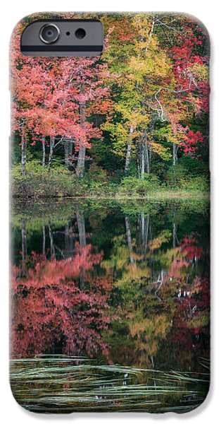 Autumn Pond IPhone Case by Bill Wakeley