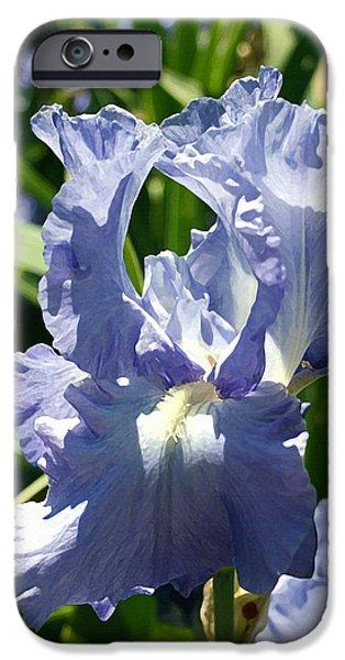 Purple Bearded Iris IPhone 6s Case by Ellen Henneke