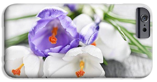 Spring Crocus Flowers IPhone Case by Elena Elisseeva