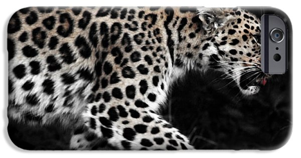Amur Leopard IPhone Case by Martin Newman