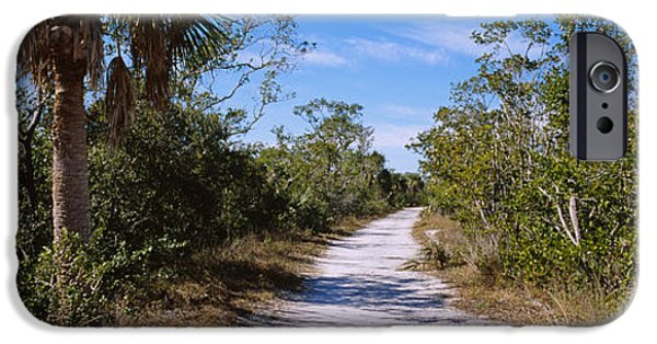 Dirt Road Passing Through A Forest IPhone Case by Panoramic Images