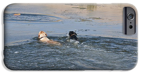 Labrador Retrievers In Pond IPhone Case by William H. Mullins