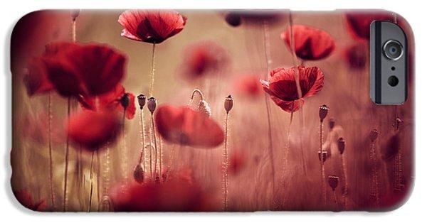Summer Poppy IPhone Case by Nailia Schwarz