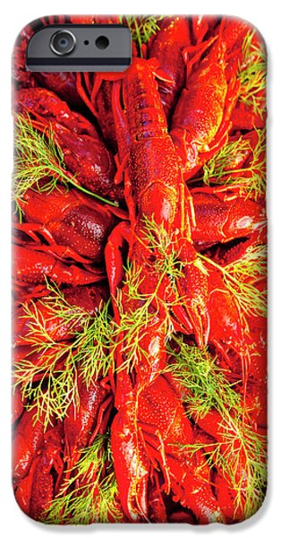 Sweden - Crayfish With Dill Eaten IPhone Case by Panoramic Images