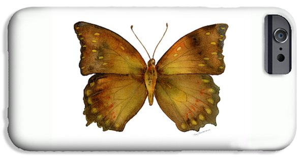 34 Charaxes Butterfly IPhone Case by Amy Kirkpatrick