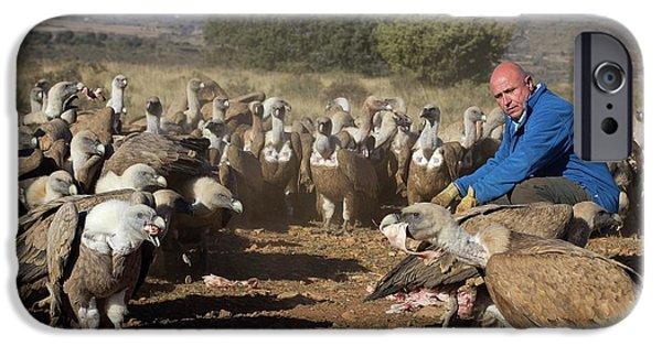 Griffon Vulture Conservation IPhone 6s Case by Nicolas Reusens
