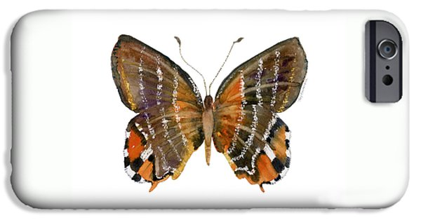 60 Euselasia Butterfly IPhone Case by Amy Kirkpatrick