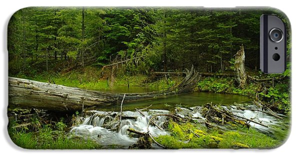 A Beaver Dam Overflowing IPhone 6s Case by Jeff Swan