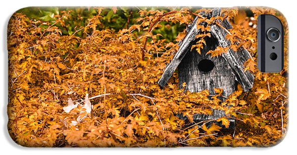 A Bird House Sits Empty In Fall IPhone Case by Jeff Folger