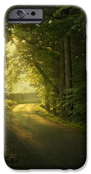 A Path To The Light IPhone 6s Case by Evelina Kremsdorf