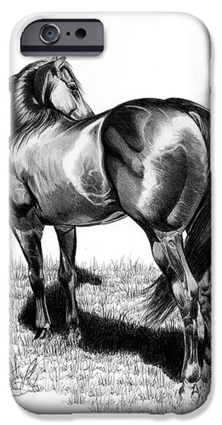 A Study Of The Thoroughbred Hindquarters In Bic Pen IPhone Case by Cheryl Poland