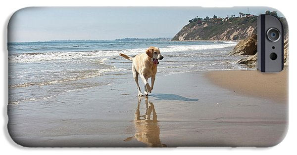A Yellow Labrador Retriever Reflecting IPhone Case by Zandria Muench Beraldo