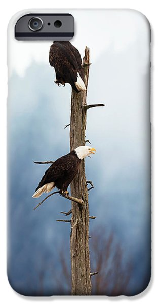 Adult Bald Eagles  Haliaeetus IPhone 6s Case by Doug Lindstrand