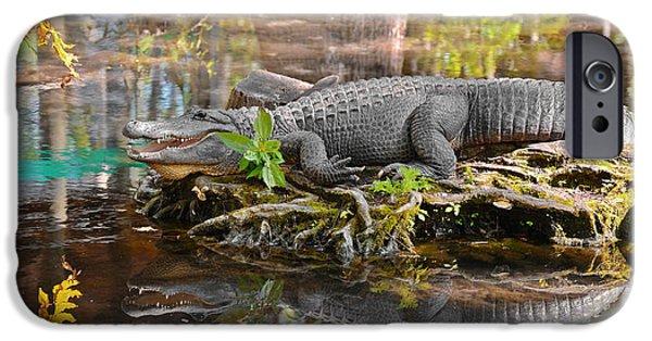 Alligator Mississippiensis IPhone 6s Case by Christine Till