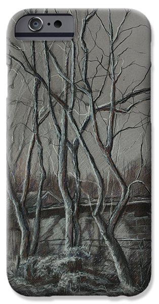 Along The Greenway 2 IPhone Case by Janet Felts