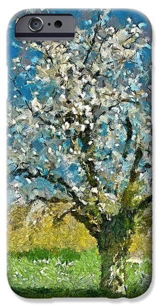 An Old Flowering Plum IPhone Case by Dragica  Micki Fortuna