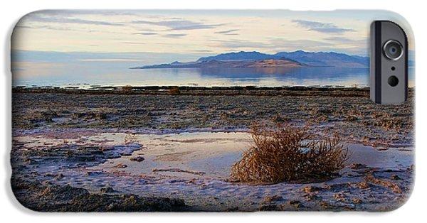 Antelope Island - Tumble Weed IPhone Case by Ely Arsha