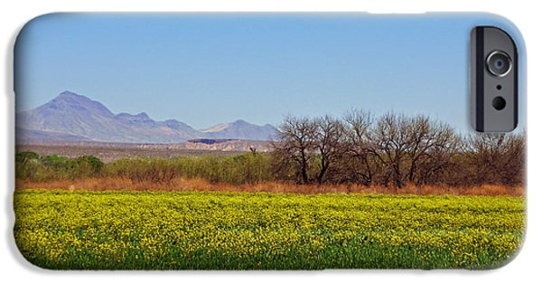 Arizona Spring IPhone 6s Case by Methune Hively