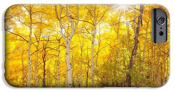 Aspen Morning IPhone Case by Darren  White