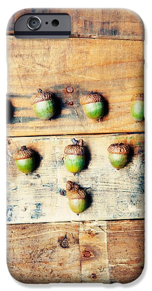 Autumn Acorns IPhone Case by Kim Fearheiley