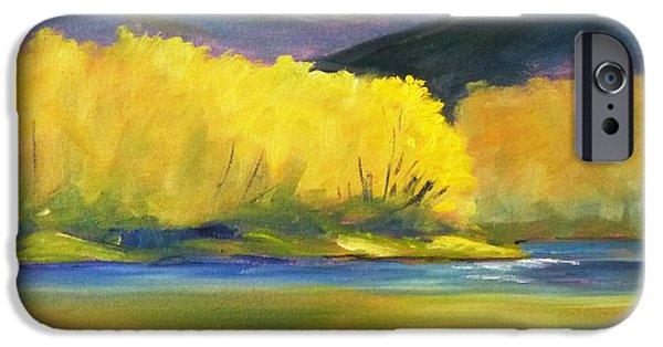 Autumn Color IPhone Case by Nancy Merkle