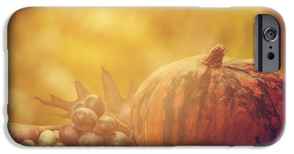 Autumn Concept IPhone Case by Jelena Jovanovic