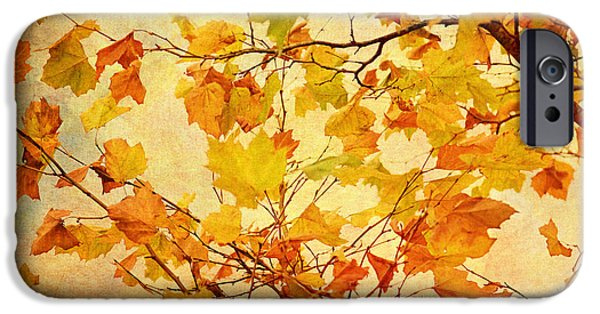 Autumn Leaves With Texture Effect IPhone Case by Natalie Kinnear