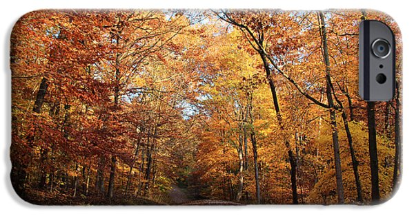 Autumn Path IPhone Case by Andrea Kappler