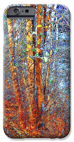 Autumn Woods IPhone Case by Ann Powell