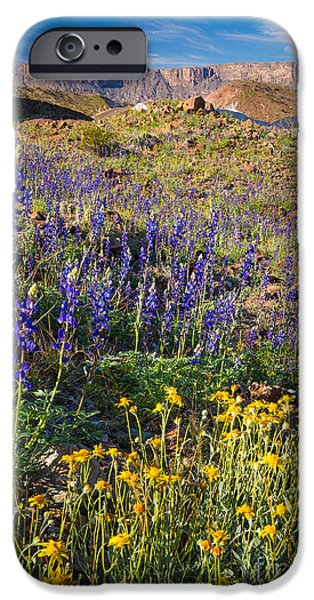 Big Bend Flowers IPhone Case by Inge Johnsson