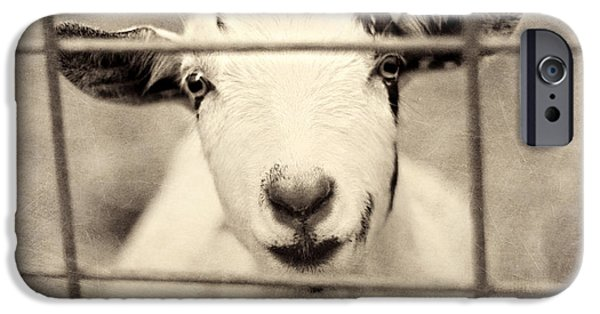 Billy G IPhone 6s Case by Amy Tyler