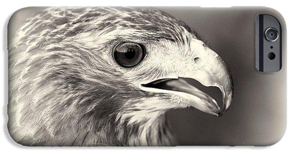Bird Of Prey IPhone 6s Case by Dan Sproul