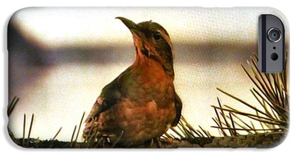 Bird On The Wire IPhone Case by Luis Ludzska